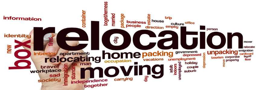 northern virginia movers companies services